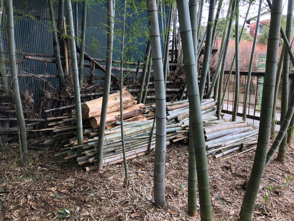 伐採した竹と木の溜まり場01