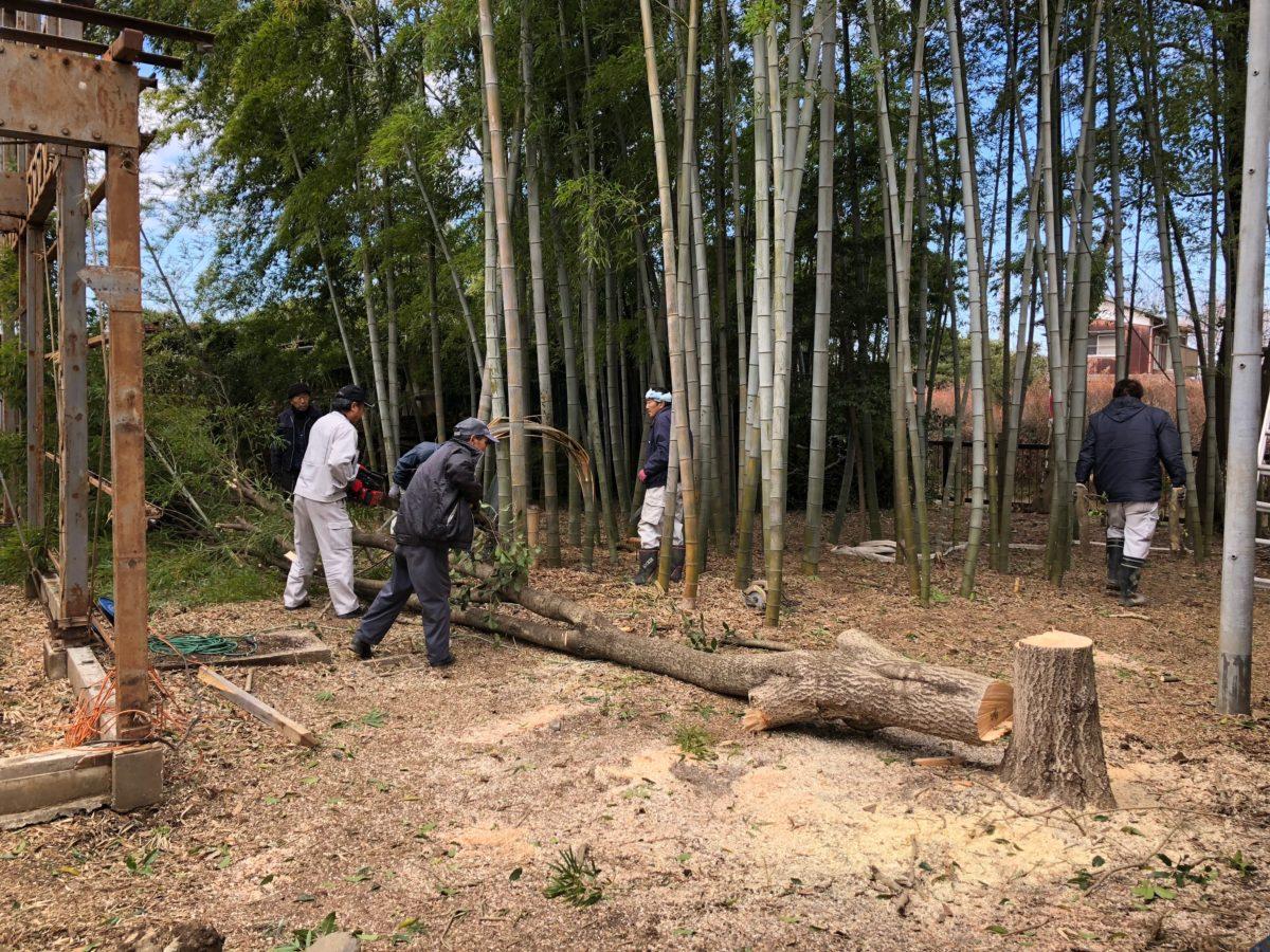 外構工事01 -木の伐採-