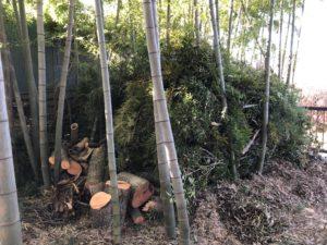 伐採した竹と木の溜まり場02